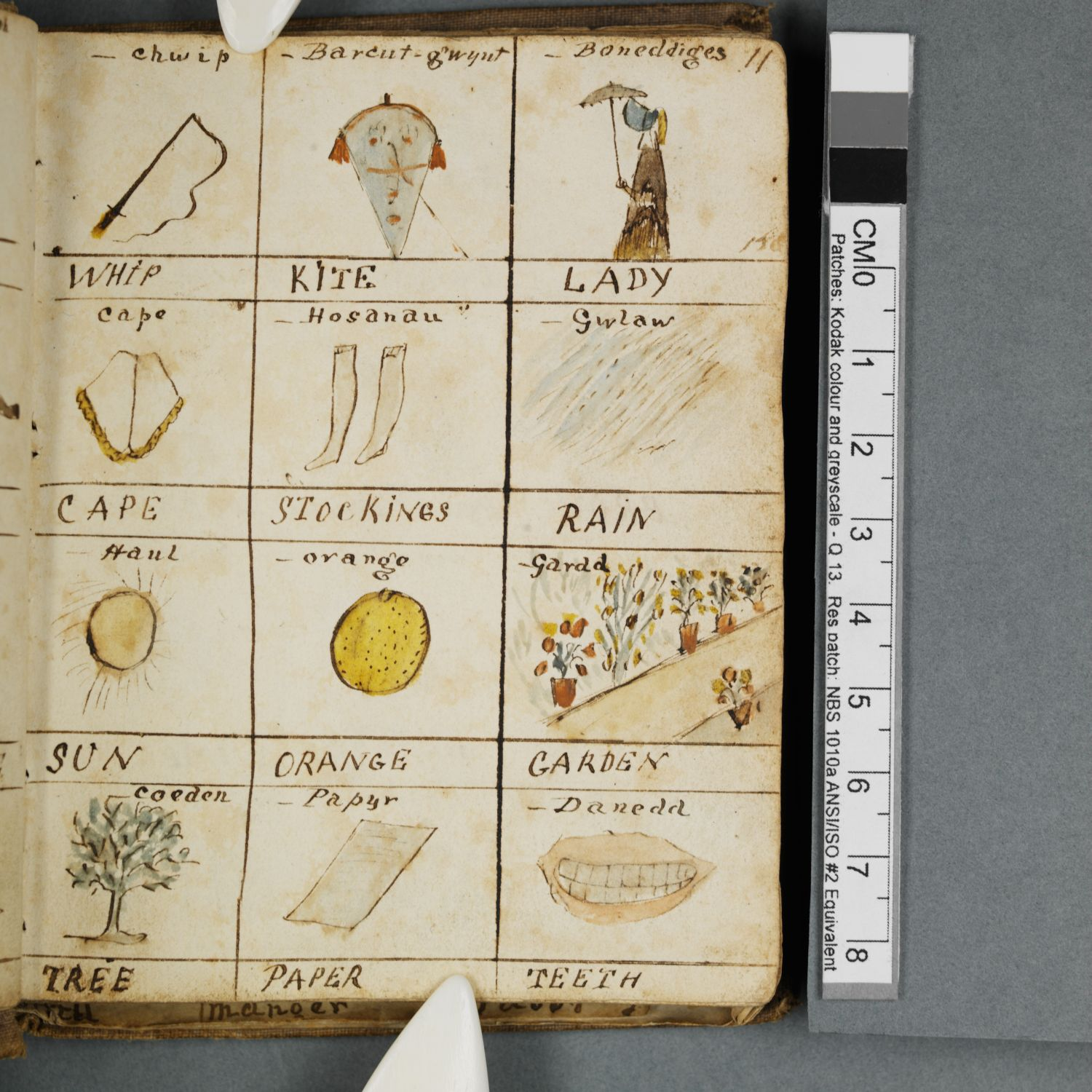 Pictorial dictionary by Eliza Pughe (c.1831-1850)